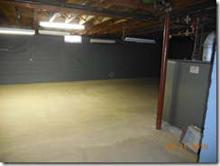 Brink water and mold after 001