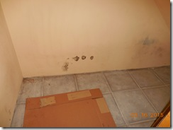 Brink water and mold before 001