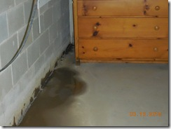 Brink water and mold before 012
