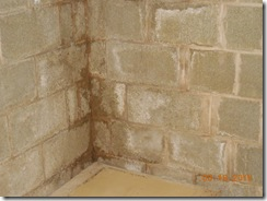 Brink water and mold before 013