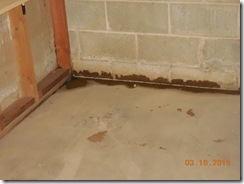 Brink water and mold before 014